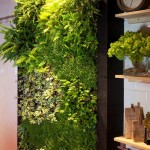 Jardín vertical interior para cocina