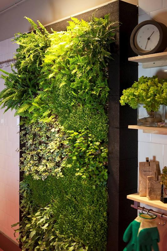 Jard n vertical interior para cocina alicante forestal for Plantas verticales interior