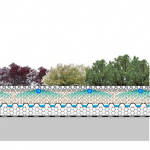 Nueva cubierta vegetal: Cántir