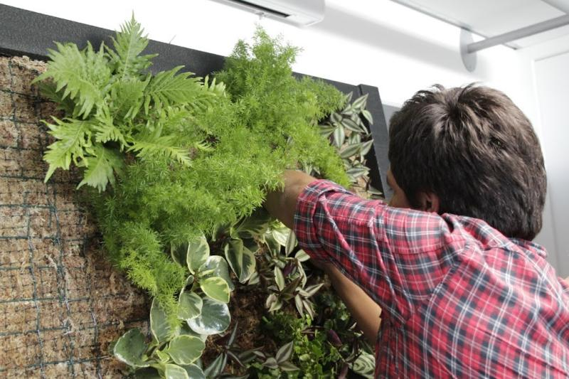 Curso formación jardines verticales jardinería jardín vertical
