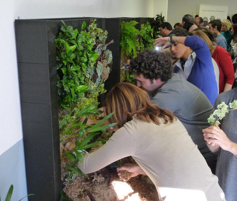 curso jardines verticales formación jardín vertical Madrid