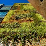 Jardín vertical en Barcelona