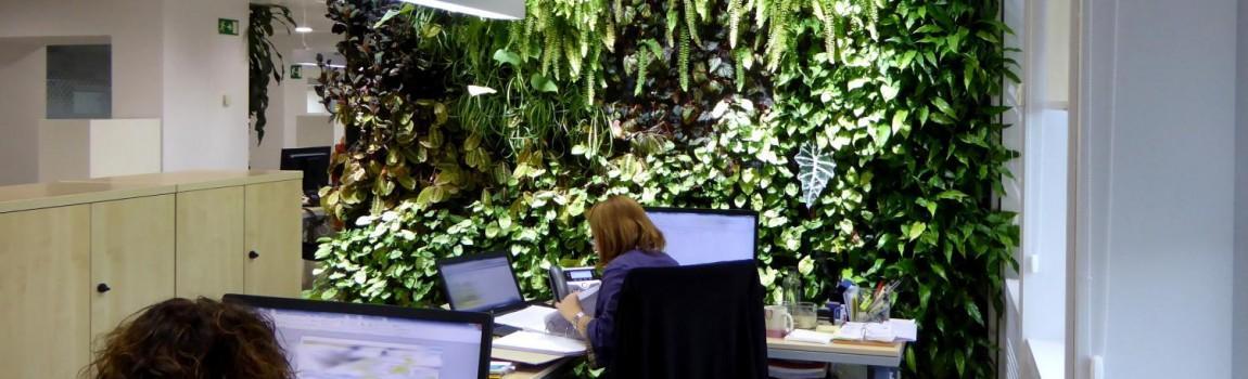 Alicante forestal p gina 5 de 17 proyectos de for Historia de los jardines verticales