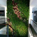 Jardín vertical en Mallorca – Santa Ponça