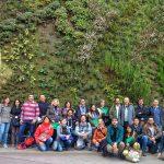 Curso de Jardines Verticales y Cubiertas Vegetales en Madrid