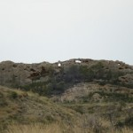 Fondo forestal: Sierra de las Ventanas, Albatera