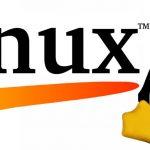 Hoy es el día de Linux