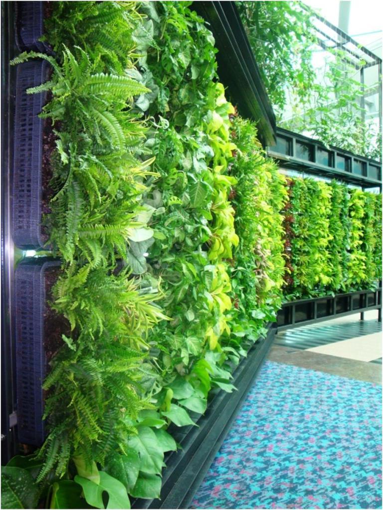 Jardín vertical sencillo