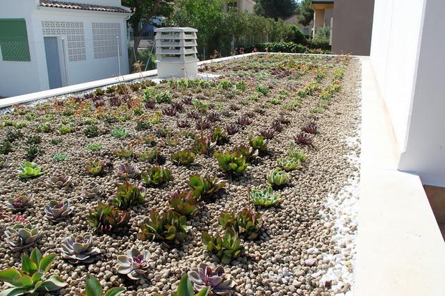 Cubierta vegetal en vilamarxant valencia alicante forestal for Jardines verticales valencia
