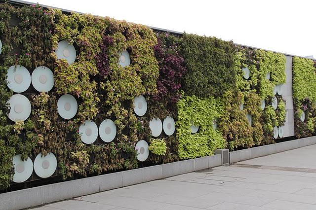 Jard n vertical sencillo y funcional de shangh i for Plantas recomendadas para jardin vertical