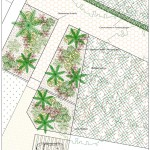 Diseño de jardín en Novelda