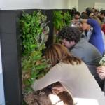 Curso de Jardinería Vertical – Vídeo y anuncio de futuros cursos