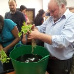 Éxito de nuestros cursos de jardines verticales