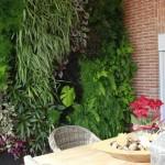 Los beneficios de un jardín vertical interior