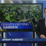 Nuestro jardín vertical de Denver sale en la Fox