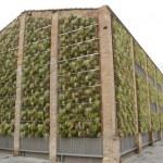 Jardín vertical Leaf.Box en Rubí, Barcelona
