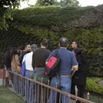 Cursos de jardines verticales en México: Guadalajara