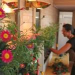 Cursos de jardines verticales de Argentina, Uruguay y Chile, volveremos