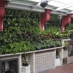 Primer jardín vertical de Toledo