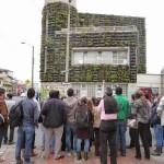 Curso de jardines verticales en Madrid – Noviembre