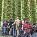 Cursos de jardines verticales en México: Puebla