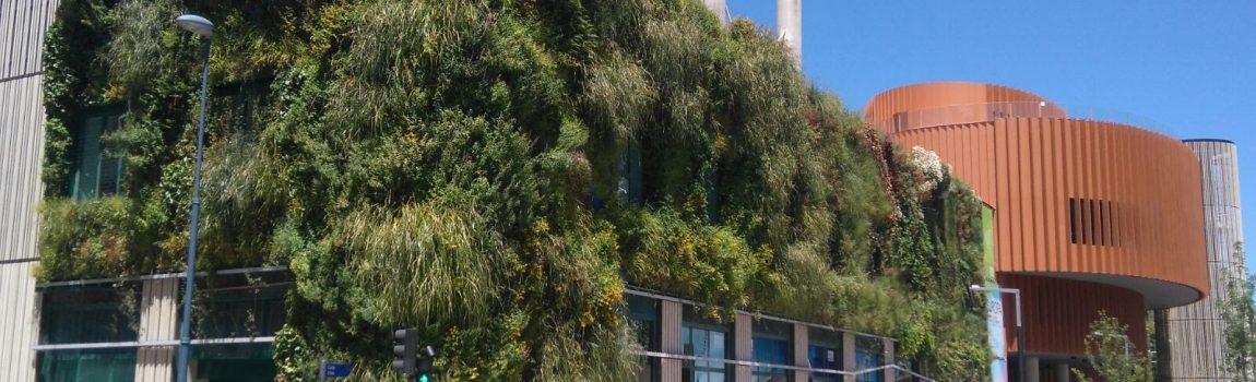 Evolución del Jardín Vertical de Vitoria-Gasteiz