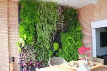 Alicante forestal proyectos de jardiner a paisajismo for Historia de los jardines verticales