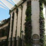 Jardín vertical en Lucena, Córdoba