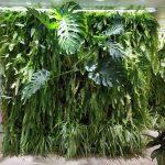 Jardines verticales en Ferring, Madrid 5 años después