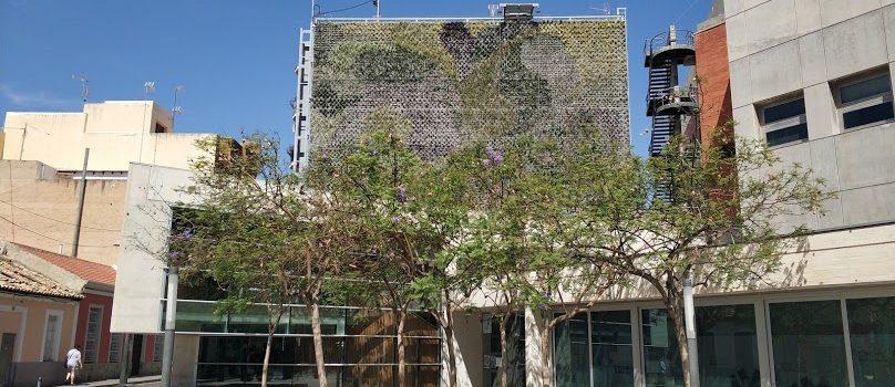 Rehabilitación del jardín vertical de San Vicente del Raspeig, Alicante