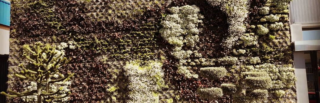 Jardín vertical nirvel cosmetics, Alcoy