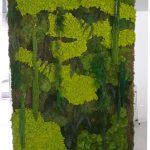 Jardín vertical de planta conservada en un hogar, Valencia