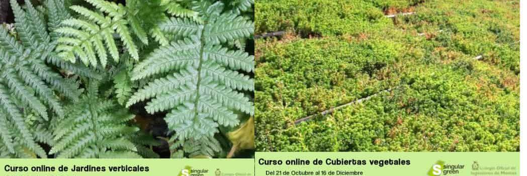 Cursos online con el Colegio Oficial de Ingenieros de Montes