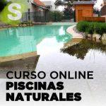 Curso online de piscinas naturales